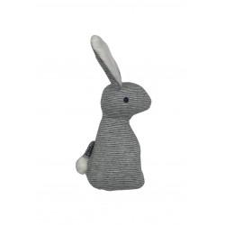 Rassel Bunny